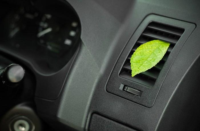 igienizzazione, Igienizzazione auto: elimina muffe e batteri